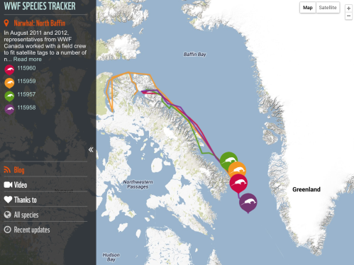World Wildlife Fund's Narwhal Tracker From 2011 And 2012